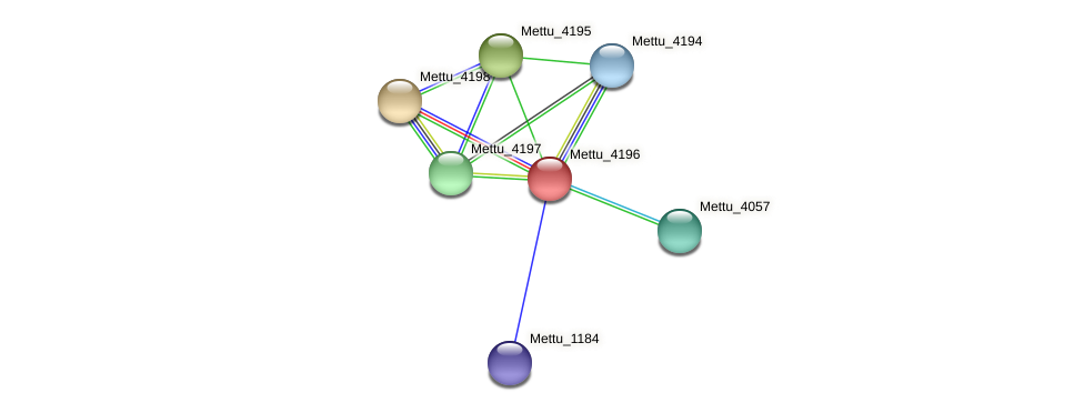 Mettu_4196 protein (Methylobacter tundripaludum) - STRING interaction network