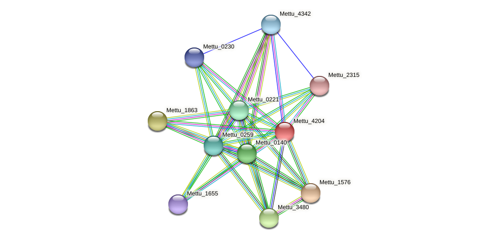 Mettu_4204 protein (Methylobacter tundripaludum) - STRING interaction network