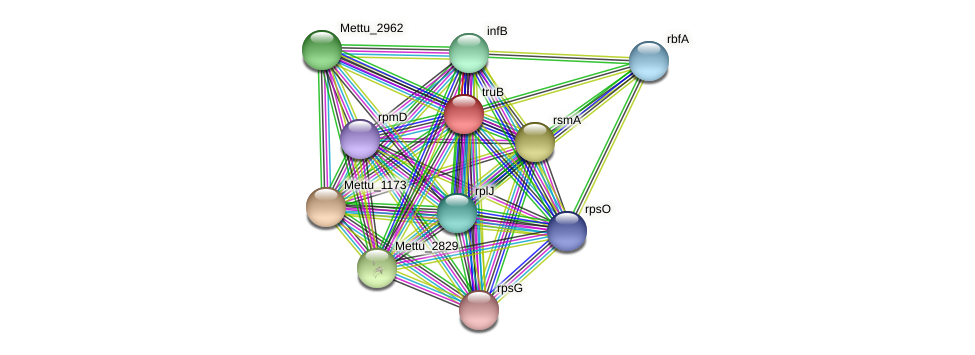 truB protein (Methylobacter tundripaludum) - STRING interaction network