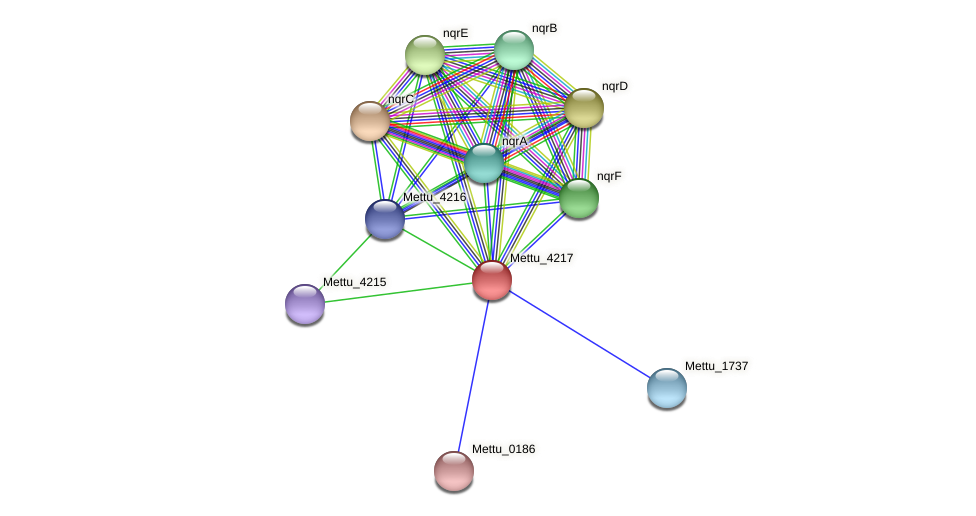 Mettu_4217 protein (Methylobacter tundripaludum) - STRING interaction network