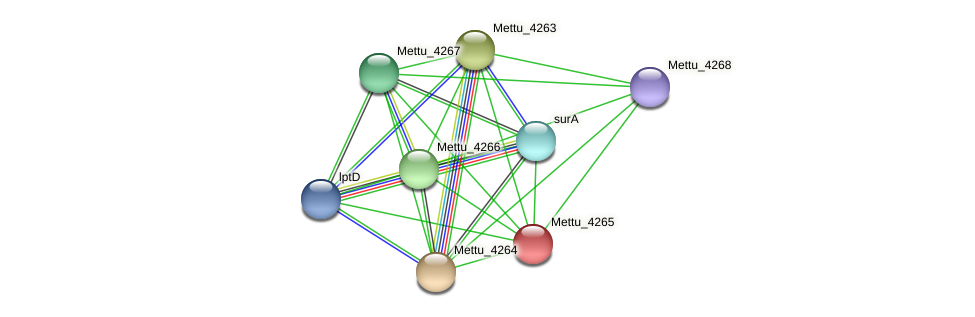 Mettu_4265 protein (Methylobacter tundripaludum) - STRING interaction network
