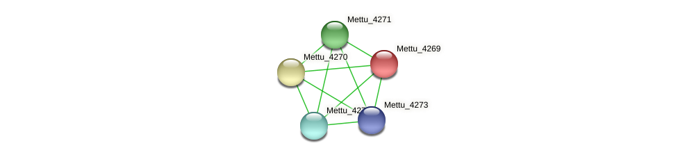 Mettu_4269 protein (Methylobacter tundripaludum) - STRING interaction network