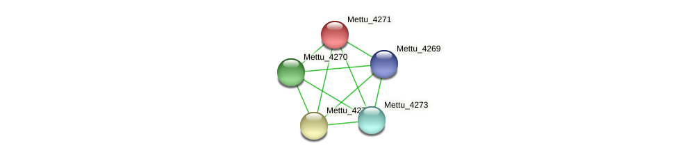 Mettu_4271 protein (Methylobacter tundripaludum) - STRING interaction network