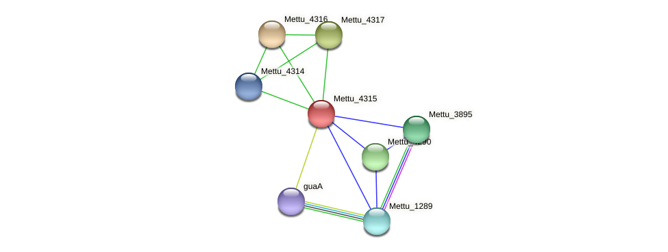 Mettu_4315 protein (Methylobacter tundripaludum) - STRING interaction network