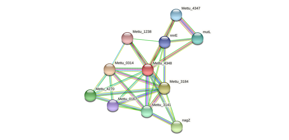 Mettu_4348 protein (Methylobacter tundripaludum) - STRING interaction network