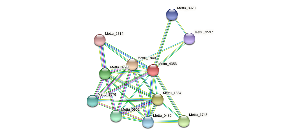Mettu_4353 protein (Methylobacter tundripaludum) - STRING interaction network