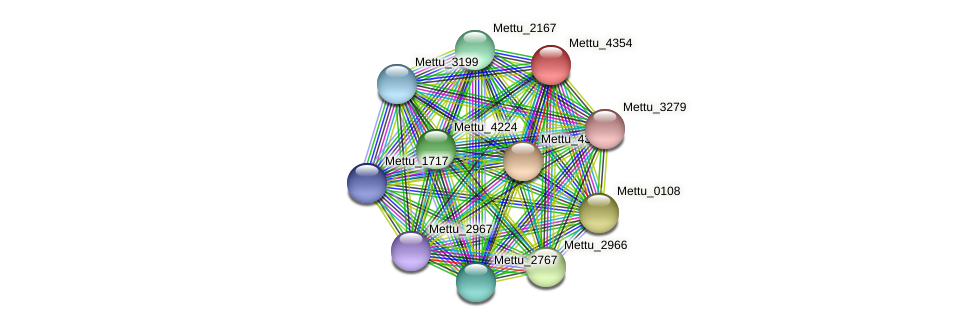 Mettu_4354 protein (Methylobacter tundripaludum) - STRING interaction network