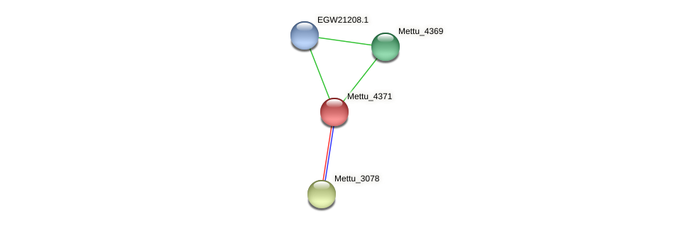 Mettu_4371 protein (Methylobacter tundripaludum) - STRING interaction network