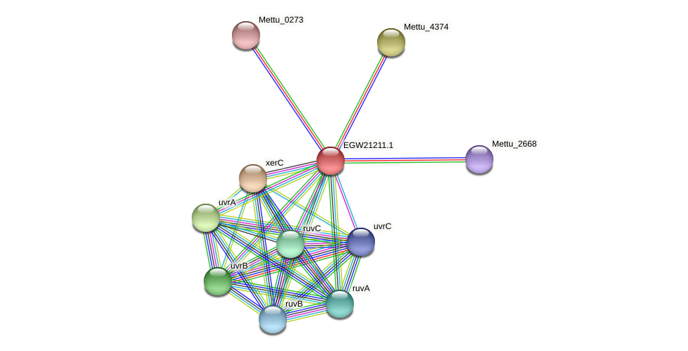 Mettu_4373 protein (Methylobacter tundripaludum) - STRING interaction network