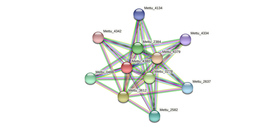 Mettu_4380 protein (Methylobacter tundripaludum) - STRING interaction network