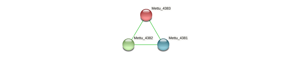 Mettu_4383 protein (Methylobacter tundripaludum) - STRING interaction network