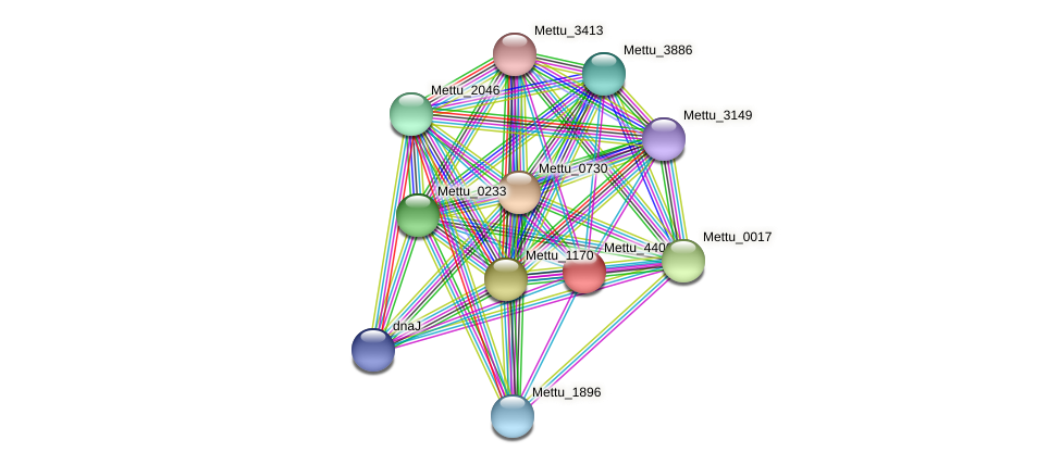Mettu_4406 protein (Methylobacter tundripaludum) - STRING interaction network