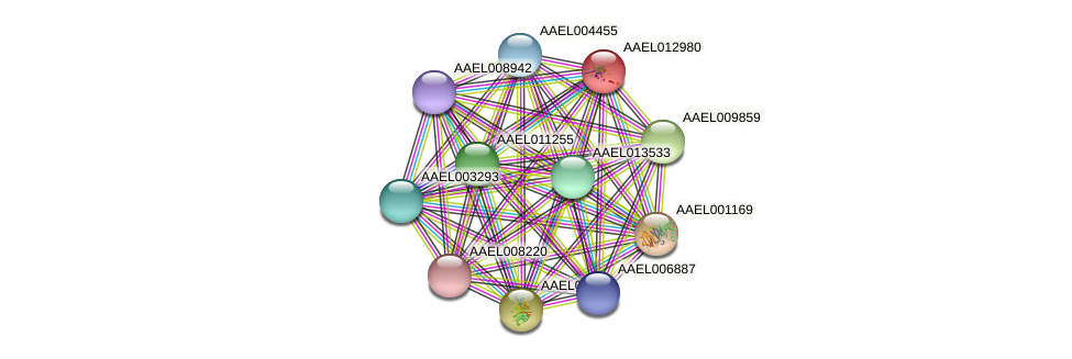 AAEL012980 protein (Aedes aegypti) - STRING interaction network