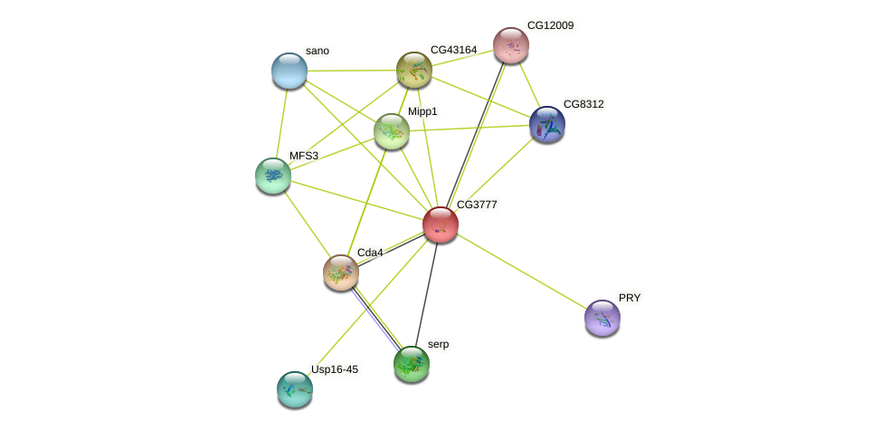 CG3777 protein (fruit fly) - STRING interaction network