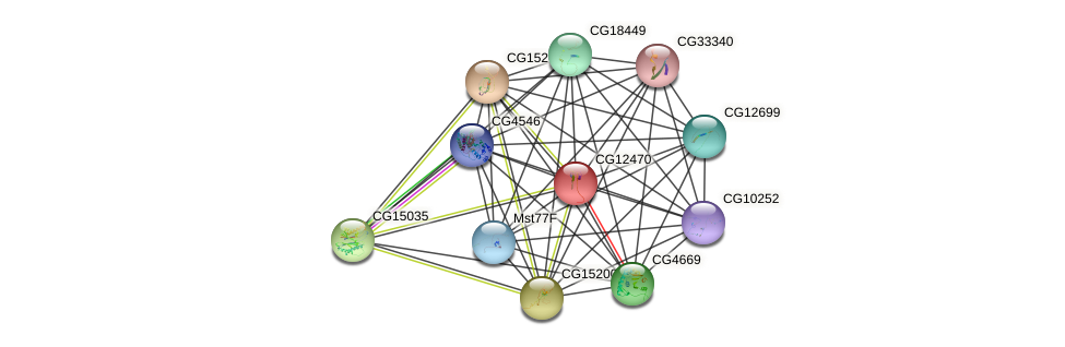 CG12470 protein (fruit fly) - STRING interaction network