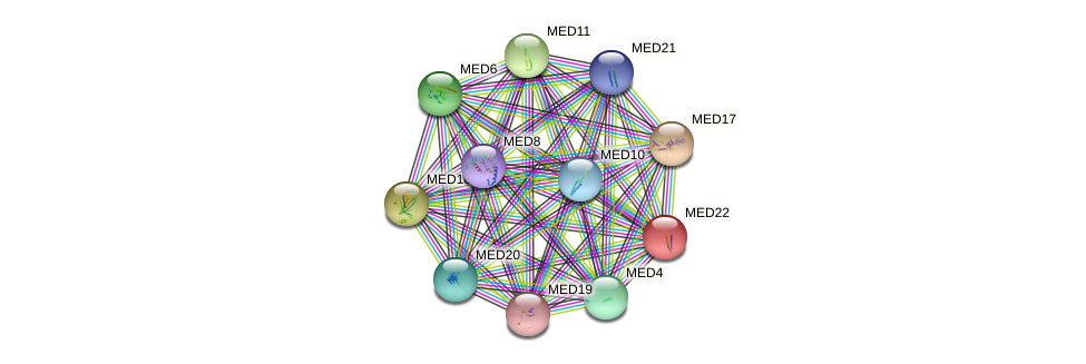 MED22 protein (fruit fly) - STRING interaction network