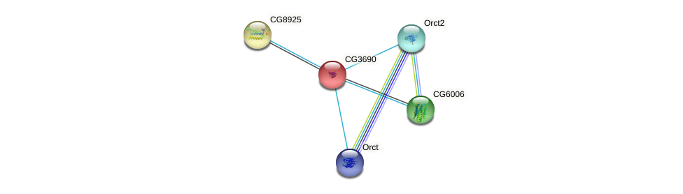 CG3690 protein (fruit fly) - STRING interaction network