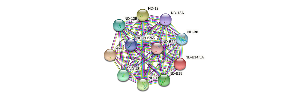 CG3621 protein (fruit fly) - STRING interaction network