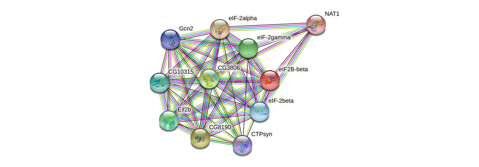 eIF2B-beta protein (fruit fly) - STRING interaction network