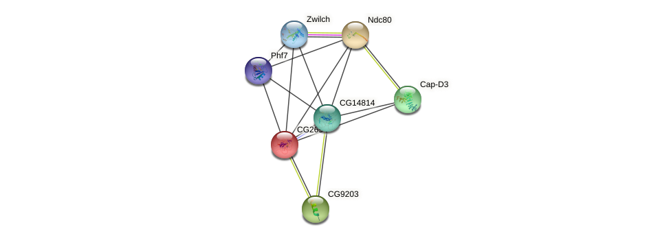 CG2694 protein (fruit fly) - STRING interaction network