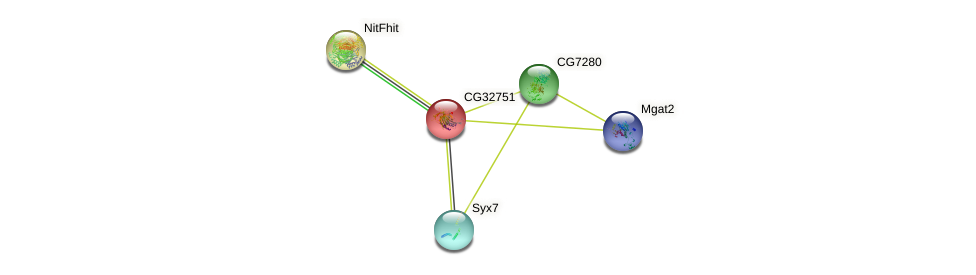 CG32751 protein (fruit fly) - STRING interaction network