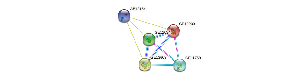 GE19290 protein (Drosophila yakuba) - STRING interaction network