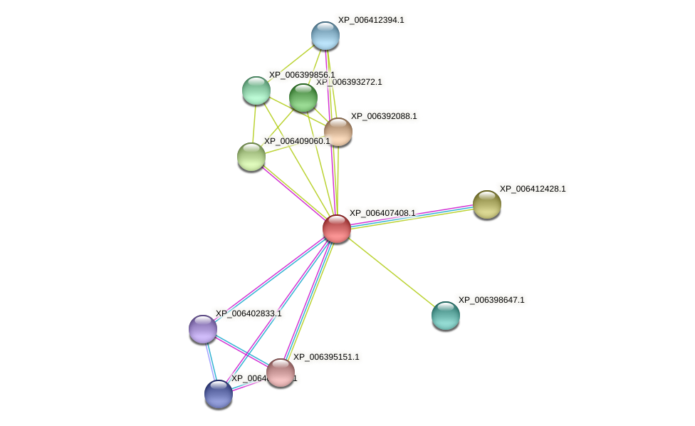XP_006407408.1 protein (Eutrema salsugineum) - STRING interaction network