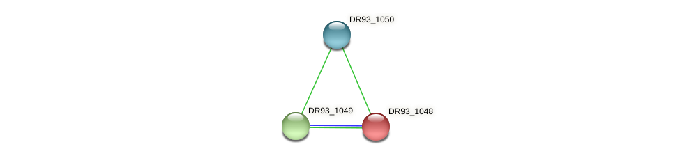 DR93_1048 protein (Pasteurella multocida) - STRING interaction network