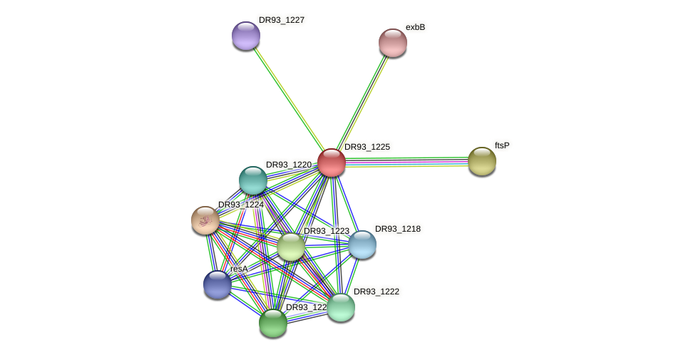 DR93_1225 protein (Pasteurella multocida) - STRING interaction network