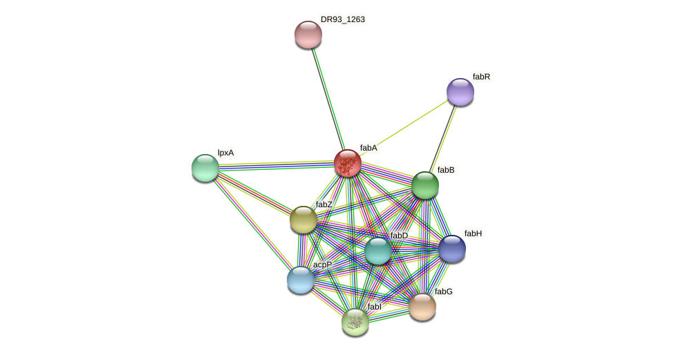 fabA protein (Pasteurella multocida) - STRING interaction network