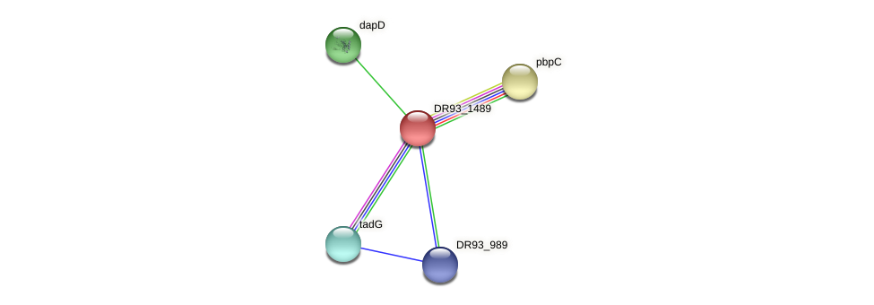 DR93_1489 protein (Pasteurella multocida) - STRING interaction network