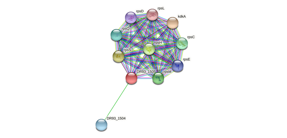DR93_1505 protein (Pasteurella multocida) - STRING interaction network