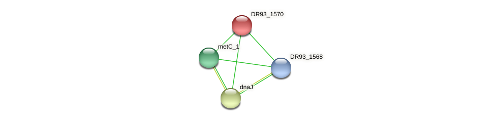 DR93_1570 protein (Pasteurella multocida) - STRING interaction network