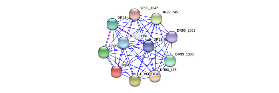 DR93_1733 protein (Pasteurella multocida) - STRING interaction network