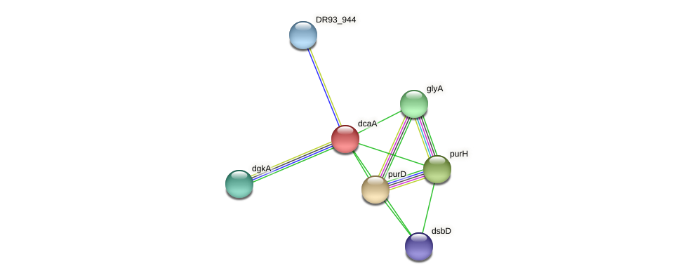 DR93_1840 protein (Pasteurella multocida) - STRING interaction network