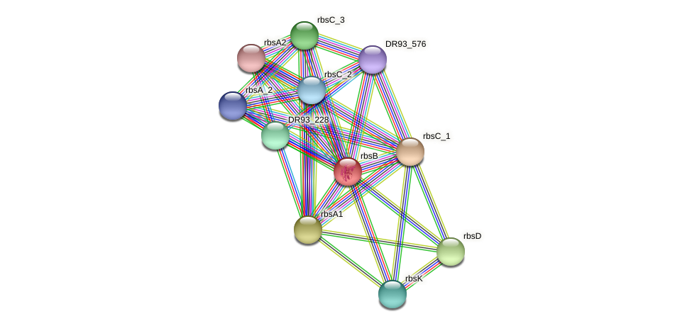 rbsB protein (Pasteurella multocida) - STRING interaction network
