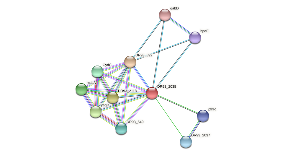 DR93_2038 protein (Pasteurella multocida) - STRING interaction network