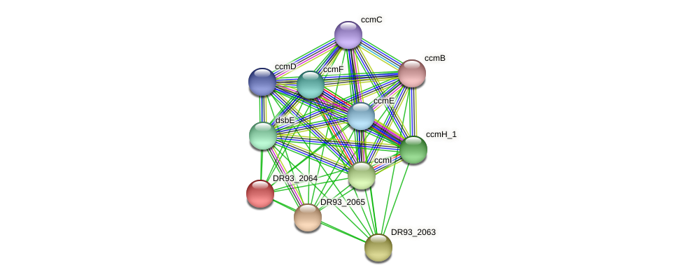DR93_2064 protein (Pasteurella multocida) - STRING interaction network