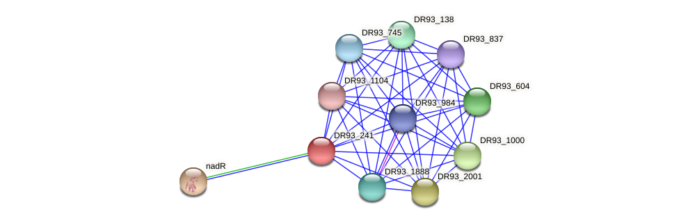 DR93_241 protein (Pasteurella multocida) - STRING interaction network