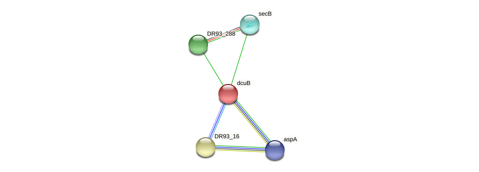 DR93_289 protein (Pasteurella multocida) - STRING interaction network