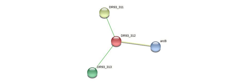 DR93_312 protein (Pasteurella multocida) - STRING interaction network