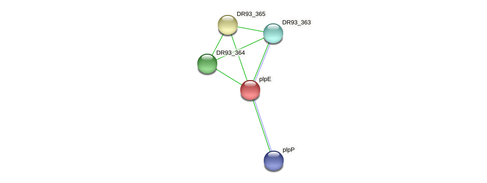 DR93_366 protein (Pasteurella multocida) - STRING interaction network