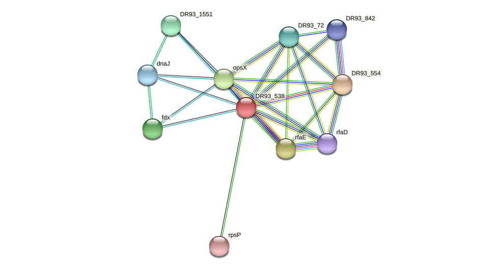 DR93_538 protein (Pasteurella multocida) - STRING interaction network