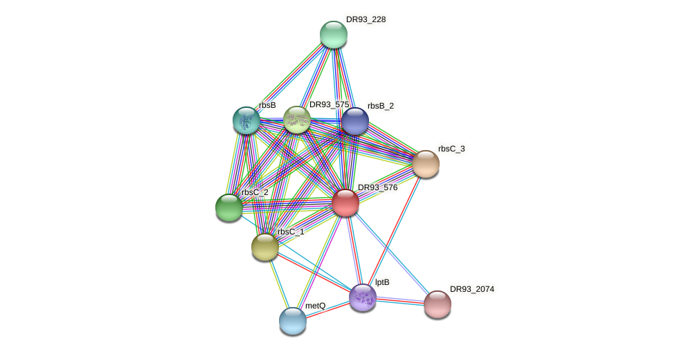DR93_576 protein (Pasteurella multocida) - STRING interaction network