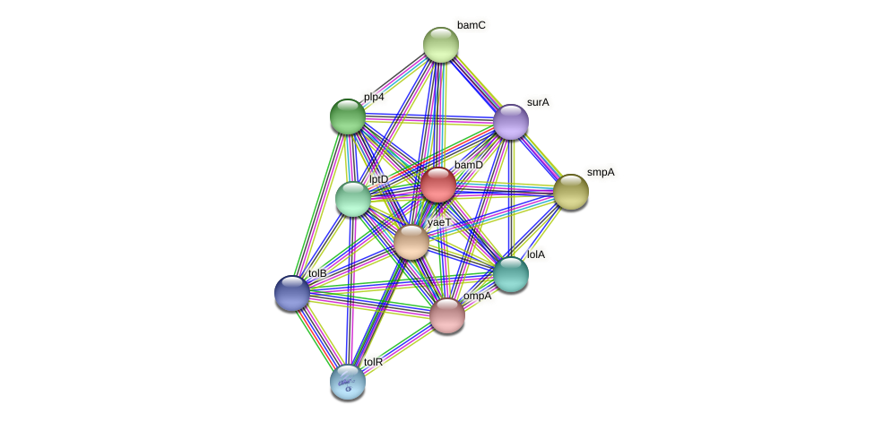 DR93_641 protein (Pasteurella multocida) - STRING interaction network