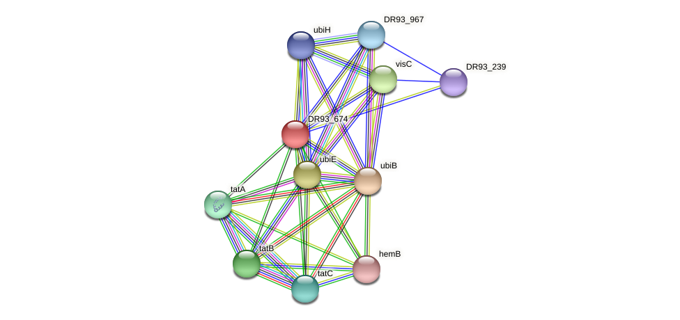 DR93_674 protein (Pasteurella multocida) - STRING interaction network