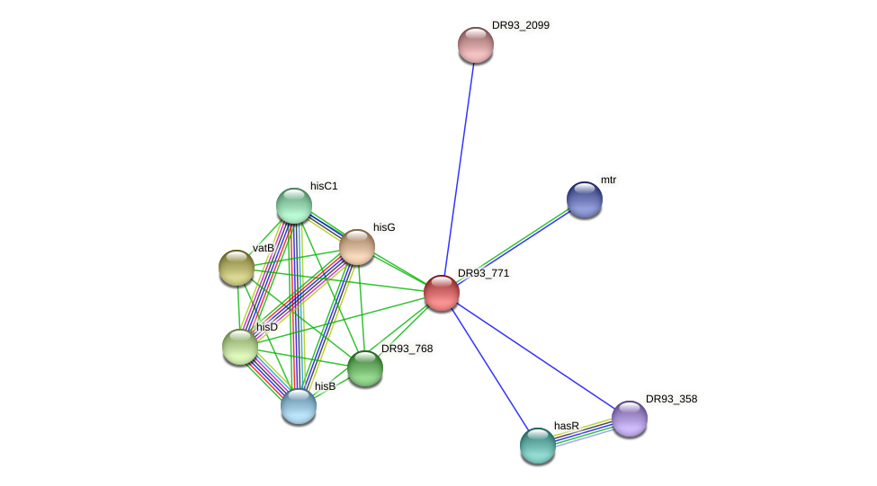 DR93_771 protein (Pasteurella multocida) - STRING interaction network