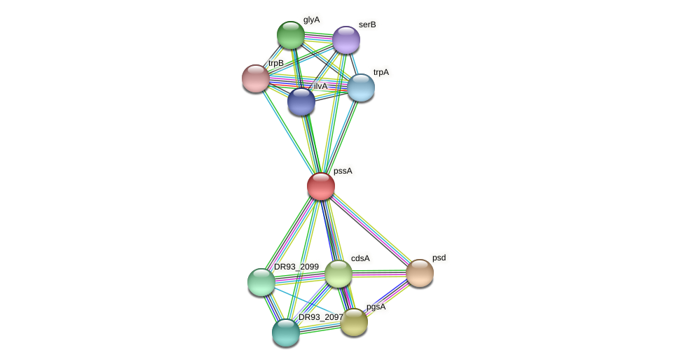 pssA protein (Pasteurella multocida) - STRING interaction network