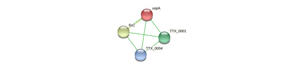 uspA protein (Thermoproteus tenax) - STRING interaction network