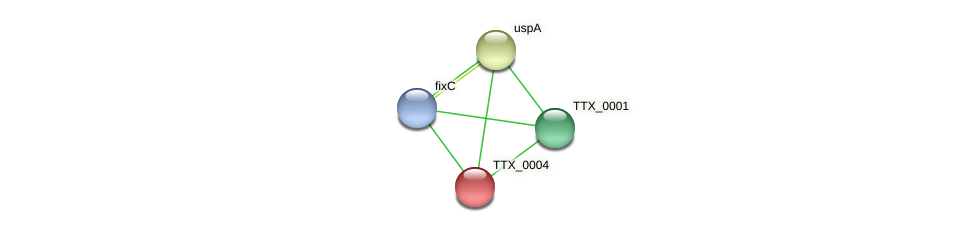 TTX_0004 protein (Thermoproteus tenax) - STRING interaction network